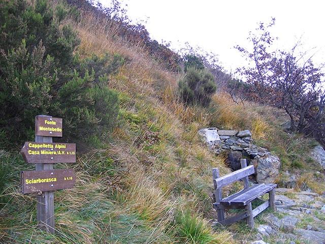 La Fonte Montebello