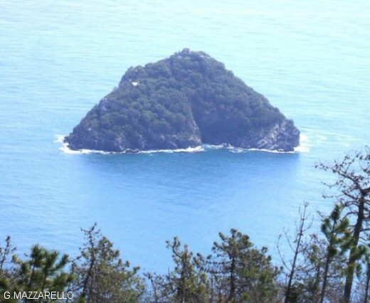 L'isola di Bergeggi dalla cima del monte Mao